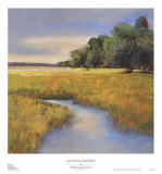 Low Country Landscape II Print by Adam Rogers