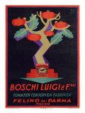 Italian Boschi Luigi Tomato Sauce Poster Giclee Print