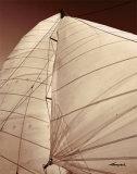 Windward Sail III Posters by Alan Hausenflock