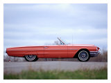 1964 Thunderbird Convertible Giclee Print by David Newhardt