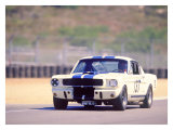 1965 Shelby GT350R Giclee Print by David Newhardt