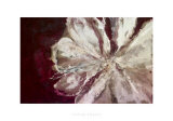 Eclatement Passionnel Prints by Clotilde Ancarani