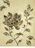 Fresco Magnolia Prints by Mandy Boursicot