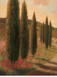 Road to Tuscany I Posters by Jill Schultz McGannon