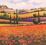 Fields of Poppies I Prints by T. C. Chiu
