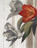 Tulip sur Papier Posters