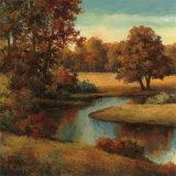 Lakeside Serenity I Kunstdrucke von T. C. Chiu