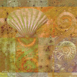 Seashell Collage Poster by Pierre Fortin