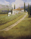 Tuscany Vineyard Posters by  Hawley