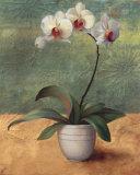 Mille Fleurs II Posters