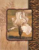 White Iris Posters by T. C. Chiu