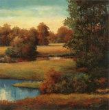 Lakeside Serenity II Kunstdrucke von T. C. Chiu