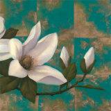 Aqua Floral II Prints by T. C. Chiu