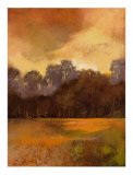 Autumn Forest I Collectable Print by  Larson