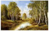 Birches in Springtime Prints by H. Buchner