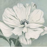 White Poppy Prints by Franz Heigl