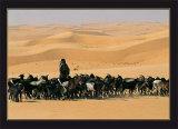 Touareg, Niger Poster by Gilles Santantonio