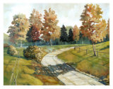 Autumn Walkway Prints by Ed Grey