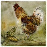 Coq et Mais Prints by  Clauva