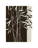 Whispering Bamboo IV Prints by Franz Heigl