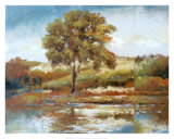Whispering Maple Art by Diann Haist