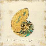 Gilded Ocean Nautilus Prints by  Studio 5