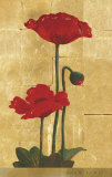 Golden Poppy II Prints by Lucinda Lewis
