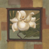 Spring Magnolia I Prints by Cooper 