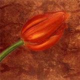 Mystic Tulip Prints by Olvia Celest