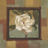 Spring Magnolia II Prints by  Cooper