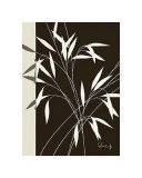 Whispering Bamboo I Prints by Franz Heigl