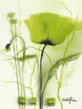 Coquelicot Vert II Poster par Marthe 