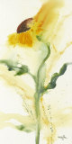Tournesol I Prints by  Marthe