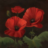 Vibrant Red Poppies I Art by Gloria Eriksen