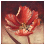 Daybreak Tulip Poster by Paulo Romero