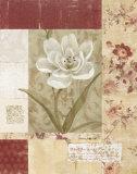 Wallpaper Tulip Prints by Carol Robinson