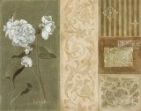Carol's Begonia Prints by Carol Robinson
