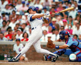 Ryne Sandberg Photo