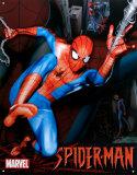Marvel Spider-Man Plaque en métal