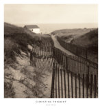 Dune Fence Prints by Christine Triebert