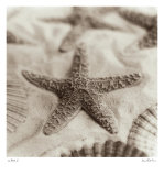 La Mer II Affiches par Alan Blaustein