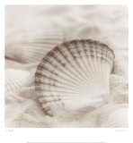 La Mer III Posters par Alan Blaustein