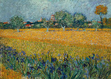Field of Flowers near Arles Prints by Vincent van Gogh