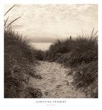 Sentier de dune Affiche par Christine Triebert