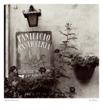Panificio Pasticerria Prints by Alan Blaustein