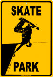 Skate Park Plaque en métal