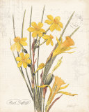 March Daffodil Posters by Katie Pertiet