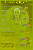 Chakras and Mudras Print