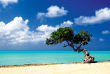Caribbean Zen Moment Posters