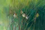 Summer Sparrows Affiches par Ellen Granter